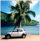 TAHITI 1 DAY CAR RENTAL